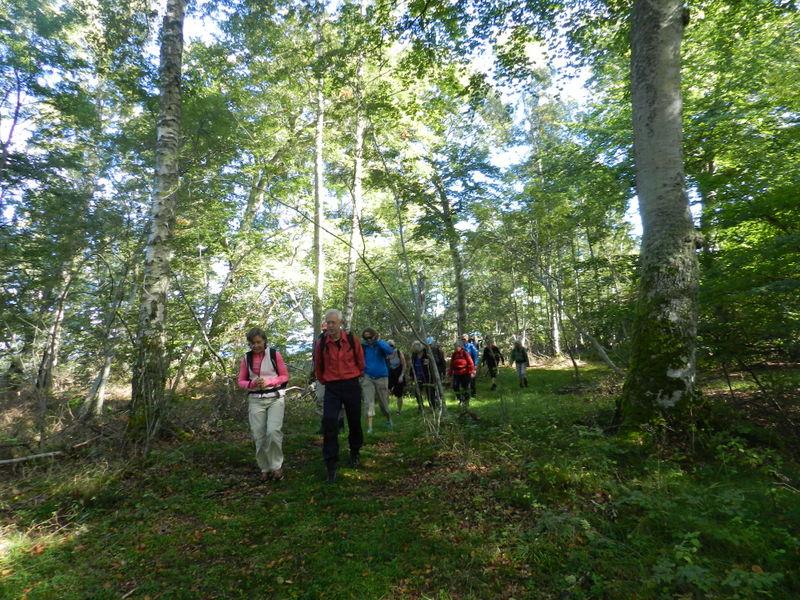 BoBokskogen på Hallands väderö