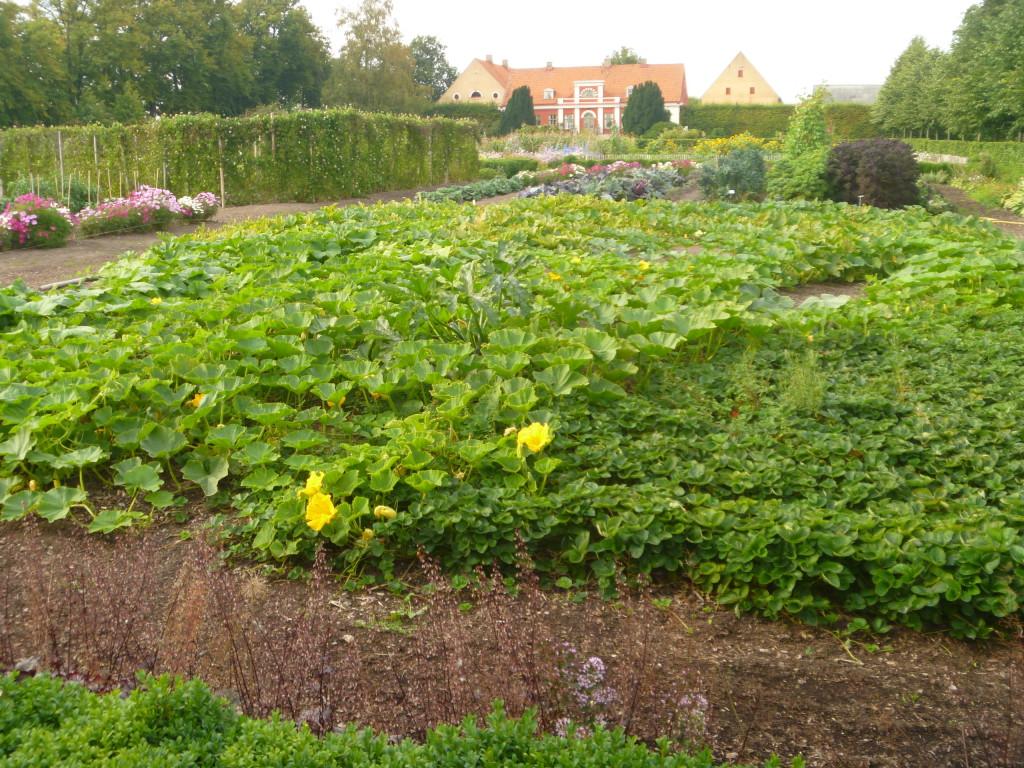 Katrinetorps gård