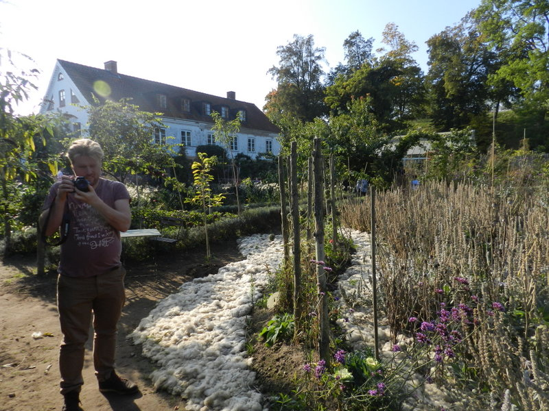 Mandelmans trädgård