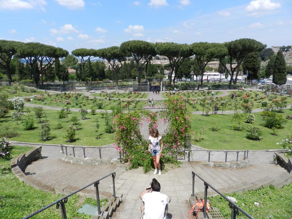 Rom och rosenträdgården