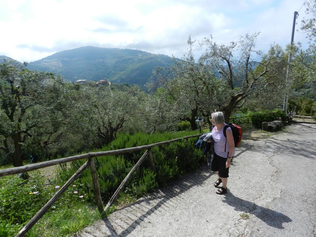 Utsikt från San Mauro