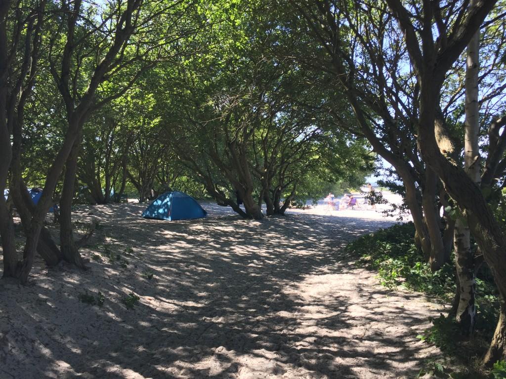 Denna dag hade några camperat på stranden, lugnt och behagligt