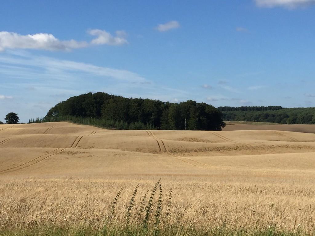 Vid Degeberga vid Häckeberga