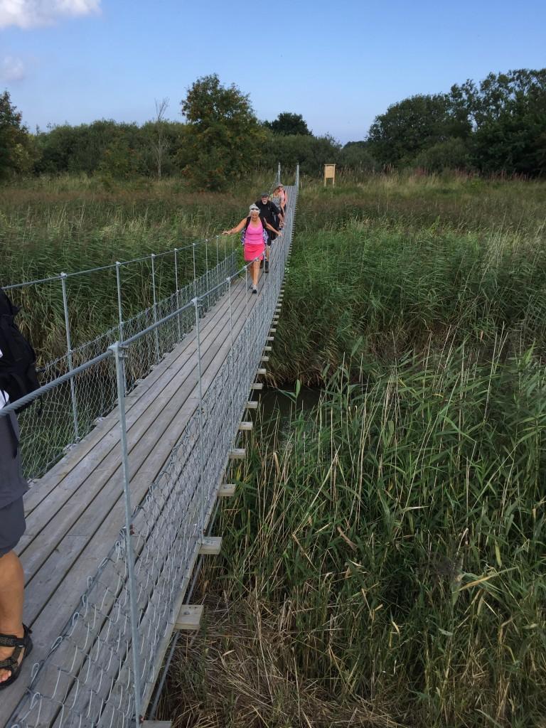 Bron över Görslövsån